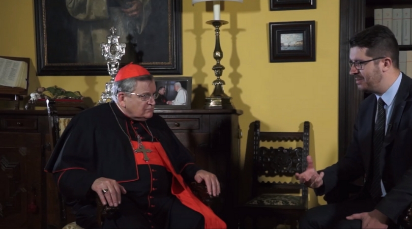 Cardinal Burke: Homosexuality, Not 'Clericalism,' Led to Abuse Crisis