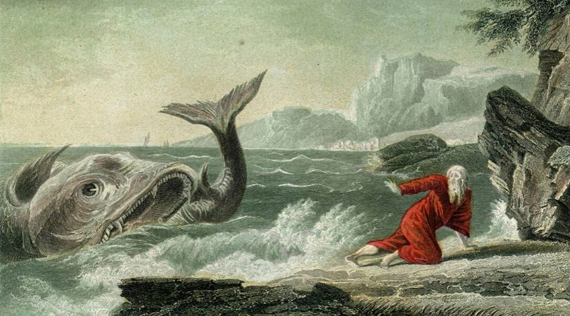 Francis Spins a Whale of a Tale